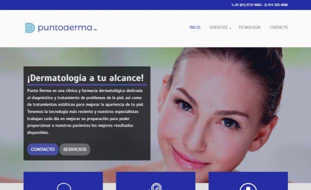 Sitio web - PuntoDerma